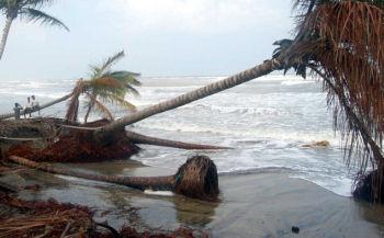 endangered islets