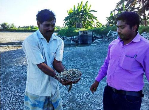 Sivagnanam, a fish farmer of Tiruvallur district