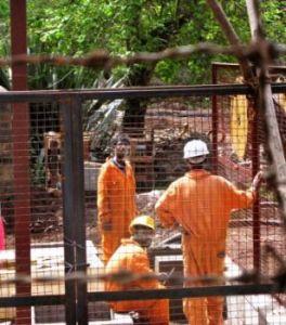 Decontamination workers