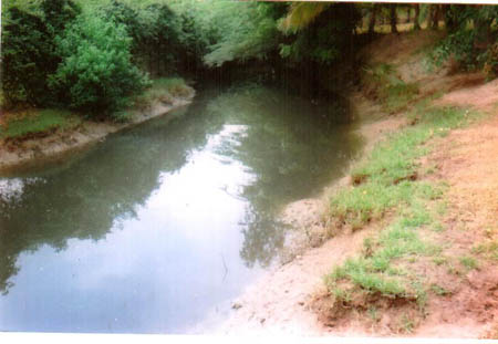 Pioneer north side near Uppanar