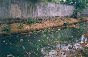 SPIC discharges effluents